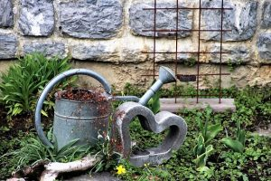En trädgårdsmur